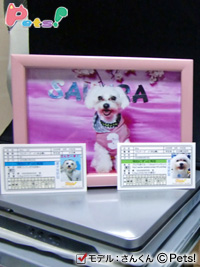 愛犬免許証「さんくん」