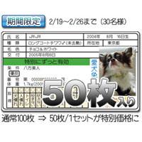 愛犬&猫免許証