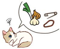 まめちしき「猫の誤食と中毒予防」