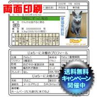 愛猫免許証