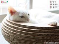 猫ちゃんのストレス解消「キャットボウル」