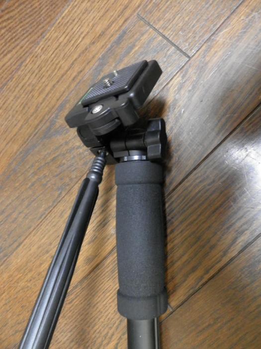 PB290018.jpg