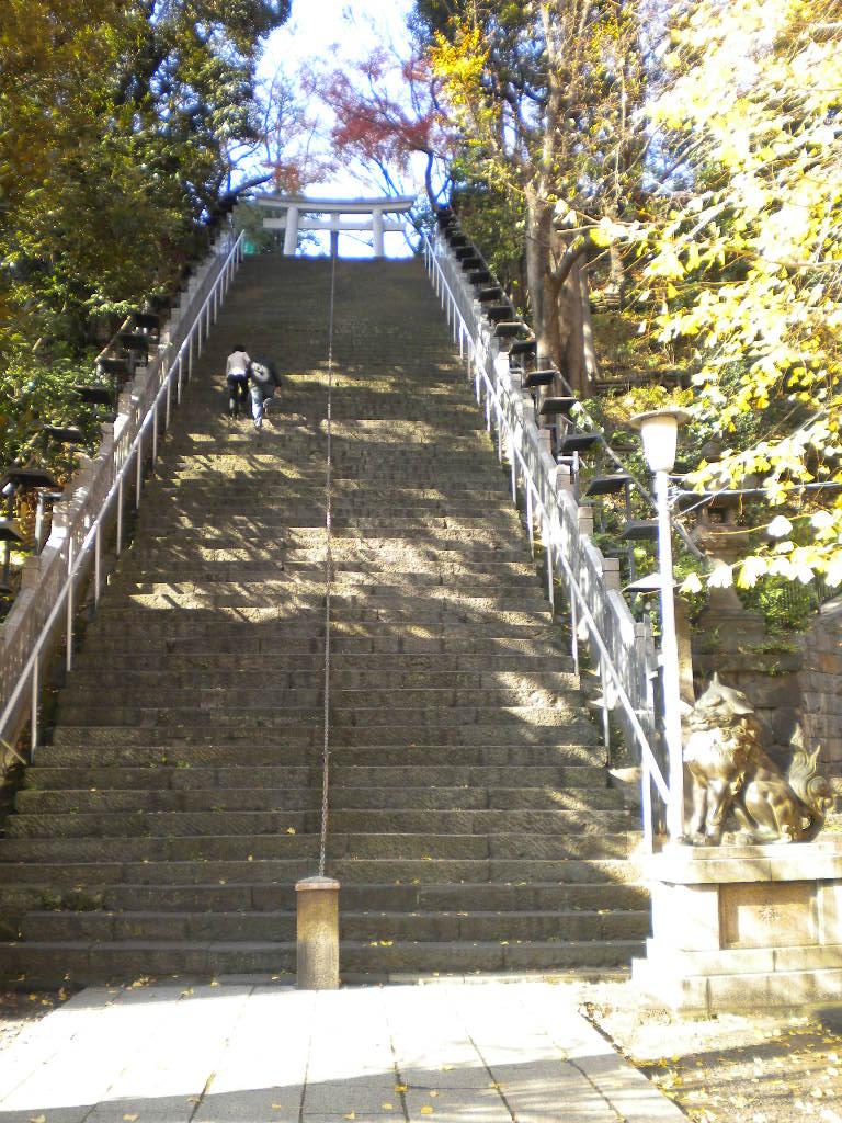 promotion steps