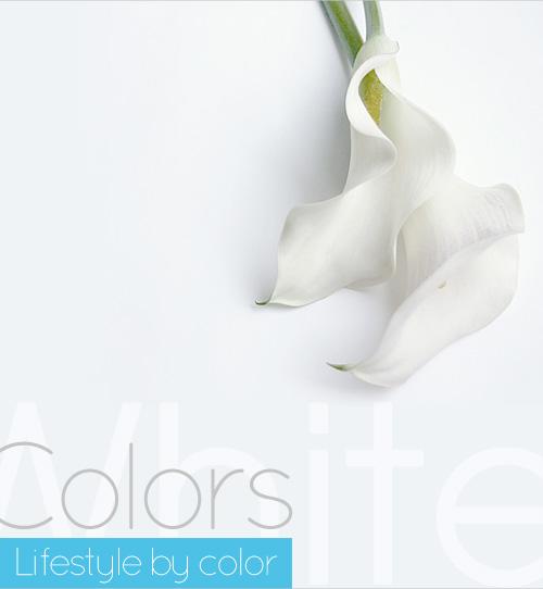whiteout005.jpg