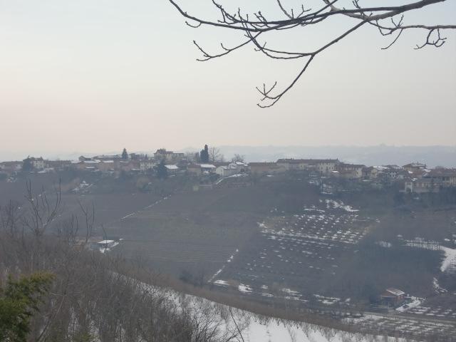 霧が晴れた田園風景