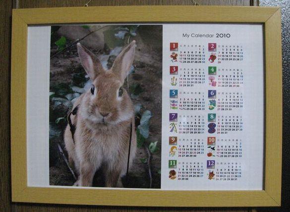 pigカレンダー