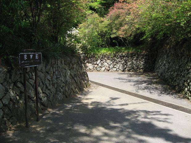 唐沢城 002