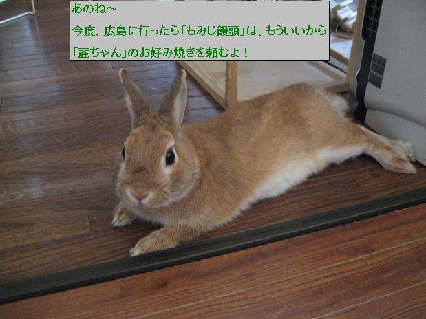 pig 20100523 001
