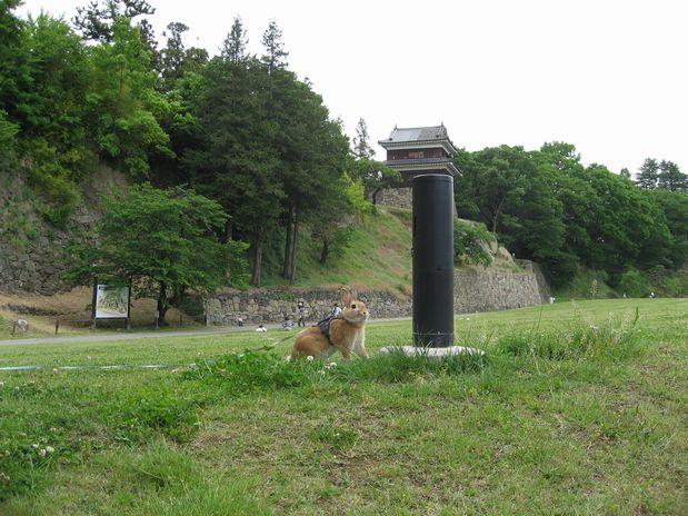 20100529 上田城 002