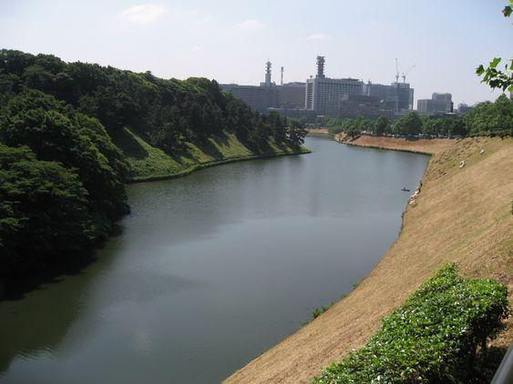 江戸城桜田壕 20100610 001