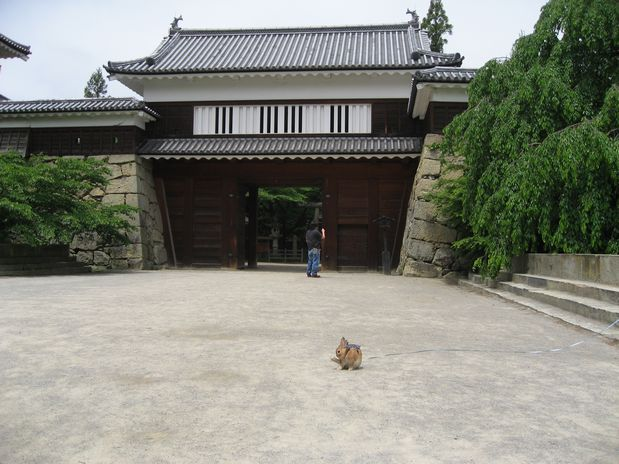 上田城 20100625 002