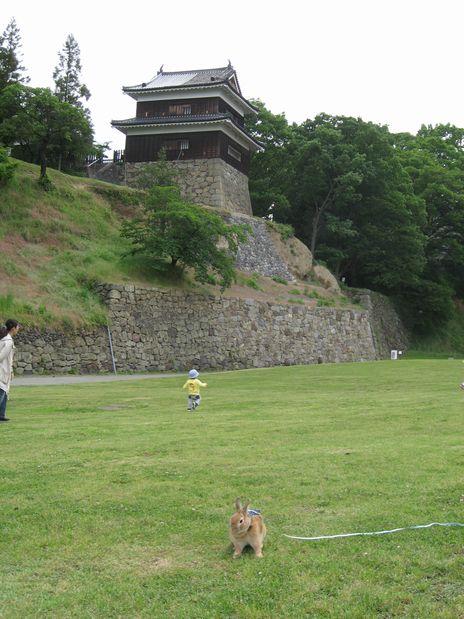 真田城 20100625 004