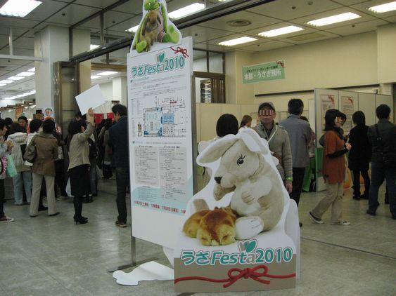 pig 20101127 003