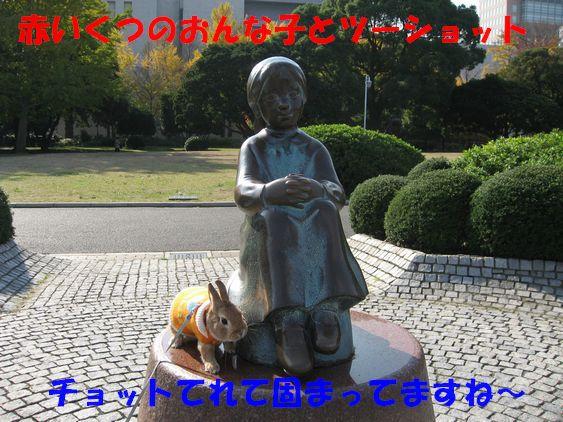 pig 20101127 010