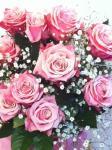 一番好きなお花