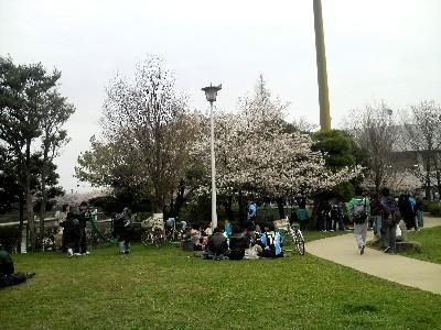 多摩川サクラシコ