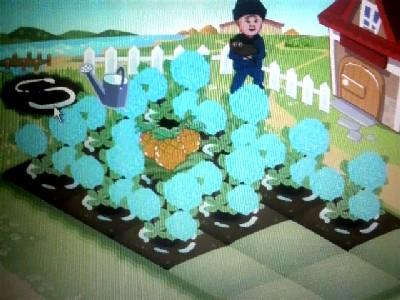 城南戦農園