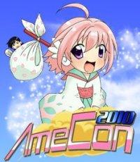 AmeCon 2010
