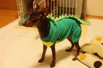 恐竜らふぁゴン