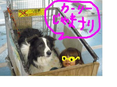snap_pinksubmarine_201112221634.jpg