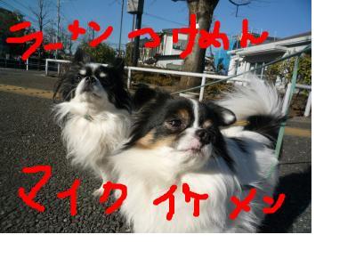 snap_pinksubmarine_20111414317.jpg