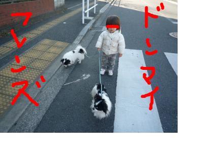 snap_pinksubmarine_201114144747.jpg