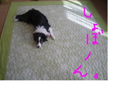 snap_pinksubmarine_201123184428.jpg