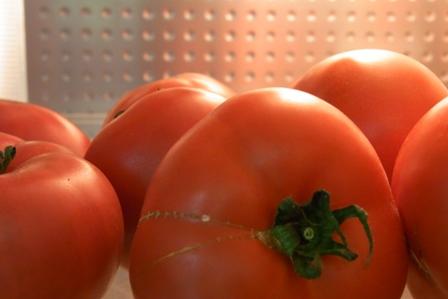 100317 tomato