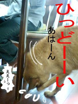 090508_0627_0002.jpg