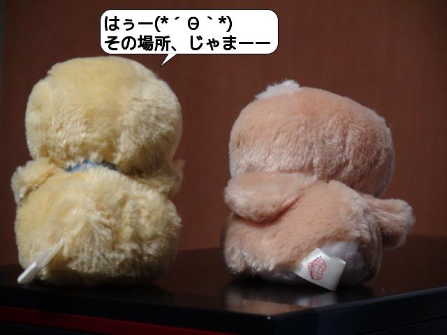 20100426_215010.jpg