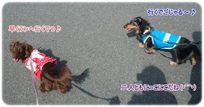 20100313_01_2.jpg