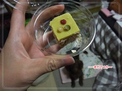 20100317_04.jpg