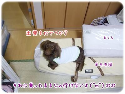 20100319_5_01.jpg