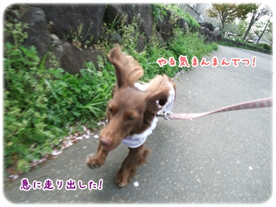 20100410_04.jpg