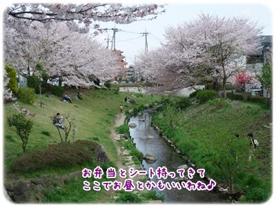 20100410_08.jpg