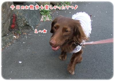 20100410_10.jpg