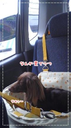 20100417_02.jpg
