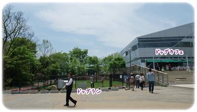 20100509_01.jpg