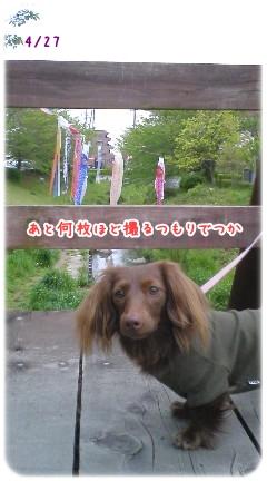 20100512_04.jpg