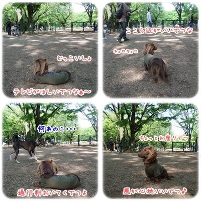 20100516_02.jpg