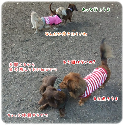 20100516_07.jpg