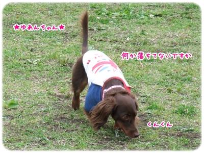 20100529_07.jpg