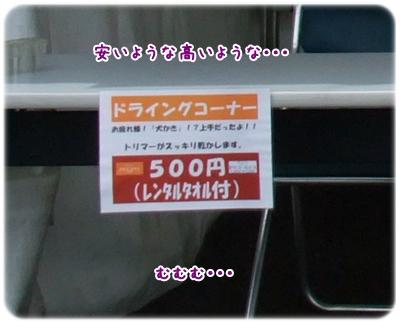 20100625_000.jpg