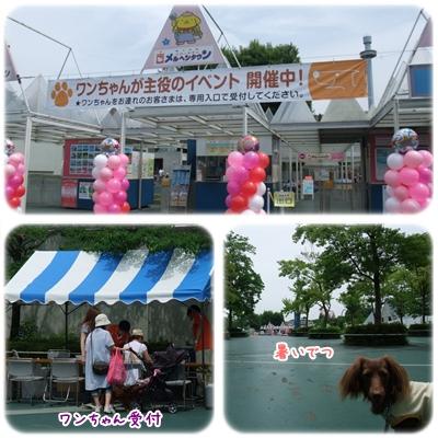 20100625_01.jpg