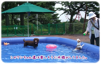 20100625_04.jpg
