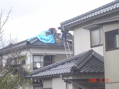 渡辺C02508