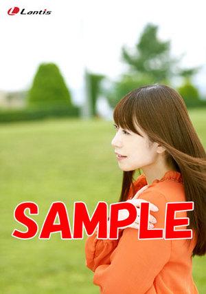 lacm-4726t.jpg