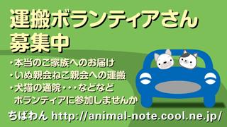 Driver_A.jpg