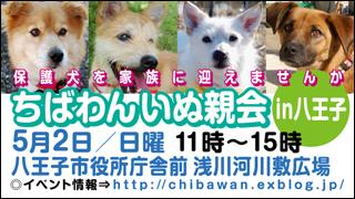 hachiouji20100502_320x180.jpg