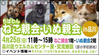 nekoinuoyakai20100425_320x180.jpg